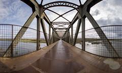 Panorámica sur (Jesus DTT) Tags: puente puentenolaya quintina guadiana ciudadreal río tren ferrocarril renfe roblonado eiffel víaverde senderismo quijote quixote acero oxido lineas lines