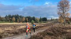 haarlerbergloop 10 km (22)