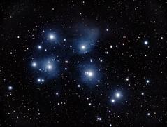 Pleaides (Tim Aldworth) Tags: astronomy ioptronieq45pro williamopticsgtf81 zwoasi1600mccool sharpcap pscc gradientxterminator pleaides m45 taurus constellation stars nightsky starcluster nebulosity
