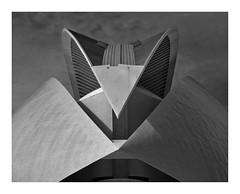 Valencia - Palau de les Arts Reina Sofía (madbesl) Tags: valencia spanien spain europa europe architektur architecture modern modernearchitetektur modernarchitecture cac palaudelesartsreinasofía oper opera dach roof ciutatdelesartsilesciències santiagocalatrava bw blackandwhite monochrom schwarzweis olympus omd em10 m10 omdem10 zuiko1250 noiretblanc design espana mono