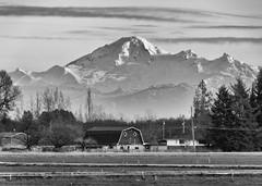 DSCF9319 (Katherine ZM) Tags: mountbaker blackwhite monochrome landscape mountain barn farm country