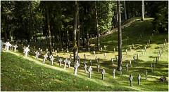 155- MALDITAS GUERRAS- VILNIUS - LITUANIA - (--MARCO POLO--) Tags: cementerios ciudades curiosidades rincones