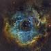 Rosette Nebula (NGC2239) (jeremyjonkman) Tags: