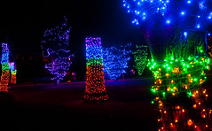 Rising Colours! (J.R. Rondeau) Tags: rondeau windsor ontario christmas xmas christmaslights christmasdecorations bright lights brightlights colours colors canoneos tamron2875 photoshopelements10