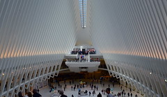 Here Within This Hall (MPnormaleye) Tags: architecture oculus utata 24mm hall structure futuristic nyc manhattan design patterns wideangle spacious dramatic