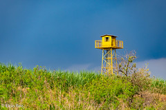 Lonely watchtower (elcio.reis) Tags: brazil piracicaba nikon brasil torre tower sãopaulo br