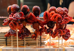 Poulpes à Osaka (Coeur de nomade) Tags: continentsetpays japon2018 asie asiedelestorientale osaka asia asieorientale jp jpn japan eastasia