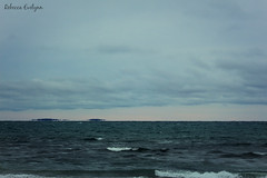 floating islands across lake ontario (Rebecca Evelynn) Tags: sky lakeontario benches chickadee barredowls naturephotography presquileprovincialpark waves crazyclouds ice ducks woodpeckers floating islands bigrock moss greenmoss