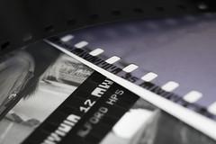 FilmStripes (tiki.thing) Tags: negatives film pentax macromonday macro layers light dots holes stripes strips print contactsheet purple canon numbers dotsandstripes