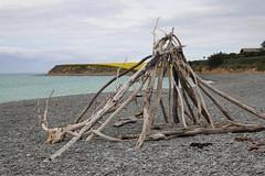 Redruth Caledonian Walkway (ambodavenz) Tags: redruth walkway timaru southcanterbury newzealand scenic redruthcaledonianwalkway beach ocean driftwood sculpture sea