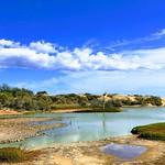 Charca de Maspalomas, Gran Canaria, Spain - 2195 thumbnail