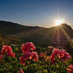 Sunrise Tenerife thumbnail