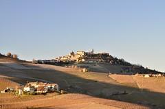 Vicinity of Barolo (Waldek P.) Tags: italy alpi alps włochy langhe piemonte piemont italia barolo winorośla winogrona grapes grapevine