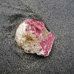 Rock on beach thumbnail