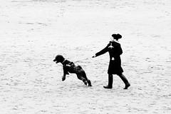 Porthcawl - Dog Walking (stevedexteruk) Tags: porthcawl christmasday 2018 seaside beach wales coneybeach sandybay walking