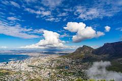 20181219DSC08954 (mchlphlmnn) Tags: südafrika southafrica southernafrica africa afrika gardenroute