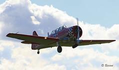 North American T 6G Texan n° SA078  ~ N4109C (Aero.passion DBC-1) Tags: spotting lens 2010 airshow dbc1 david biscove aeropassion avion aircraft aviation plane north american t6 texan ~ n4109c