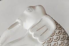 White Elephant (holly hop) Tags: mmwhiteonwhite macromonday macromondays macro whiteonwhite white elephant whiteelephant