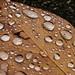 Raindrops_002