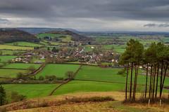 Peak Hill-1-10 (Sheptonian) Tags: somerset rural scenic landscape trees fauna grassland