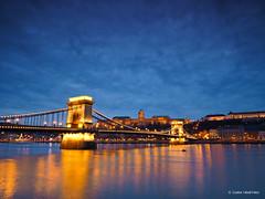 Chain Bridge (Csaba Vásárhelyi) Tags: budapest hungary magyarország bridge híd chain water víz danube duna olympus omd em10ii river folyó sky égbolt