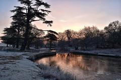 Arctic sunrise! (Nina_Ali) Tags: sunrise leicestershire backlit winterlight ninaali winter2019 nikond5500 bradgatepark