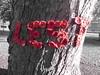 Lest Poppy Tree Trunk Yarn Bomb Cottenham Nov 2018 (Uncle Money UK) Tags: lest poppy remembranceday centenary treetrunk yarnbomb cottenham november 2018 selectivecolouring