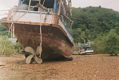 Koh Lanta (mr. Wood) Tags: lanta film leica leicam m6 summilux voigtlander wideheliar sunset thailand krabi andaman filmisnotdead ishootfilm leicathailand leicausa leicarussia