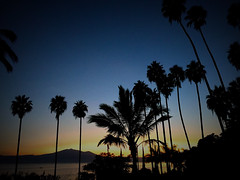 Sunset Chapala (volkanorocks) Tags: chapala sunset palms