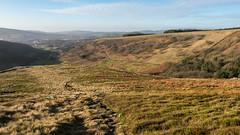 At the edge of the moors (Maria-H) Tags: hills peakdistrict pennines path glossop highpeak derbyshire uk olympus omdem1markii panasonic 1235