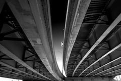 The S Curve (DJ Wolfman) Tags: black white blackandwhite bw grandrapids grandrapidsmi road steel curve expressway michigan micro43 olympus olympusomd em1markii