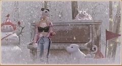 minamikaze190114-1 (minamikaze2010) Tags: elikatira fameshed hat izzies pseudo teefy spirit serendipity furniture littlebranch enchantedwoods jian madras halfdeer decoration winter tree snow snowballfight