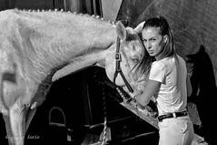 White horse (ioriogiovanni10) Tags: monotone blackandwhite biancoenero animal foto fotografia 28 d90 occhi viso face photographer fotografo nikon donna sguardo eyes ragazza girl femme cavallo horse whitehorse