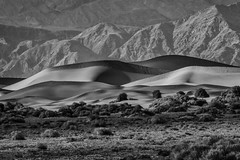 Distant Dune Ridge, Black and White (Jeffrey Sullivan) Tags: states death national park sand dunes deathvalley nationalpark california desert usa landscape photography canon eos 70d road trip jeff sullivan photo copyright november 2015 travel unitedstates black white on1 silver efex on1pics lightroom