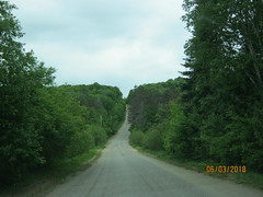 LOVE THOSE BACKROADS! (bitemeasshole69) Tags: kinarkoutdoorcentre minden ontario canada lakes water outdoors wilderness nature specialneedscamp autismontario activities freshair upnorth northernontario camping respite fun exhilirating hwy35 counsellors scenic picturesque calming serene peaceful landscape wildscape coniferous deciduous trees nativetrees foliage underbrush lush canadianwilderness spring2018 green bugs insects