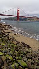 2015-03-27_12-20-53_ILCE-6000_2796_DxO (Miguel Discart (Photos Vrac)) Tags: 2015 27mm architecture beach createdbydxo dxo e18200mmf3563 editedphoto focallength27mm focallengthin35mmformat27mm goldengate ilce6000 iso100 landscape meteo plage sanfrancisco sony sonyilce6000 sonyilce6000e18200mmf3563 vacance weather