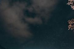 Andrómeda (RonaldHV) Tags: colombia cauca tierradentro estrellas stars astrofotografía astrophotography cielo sky noche night andrómeda