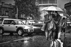 embracing the storms of life (gro57074@bigpond.net.au) Tags: guyclift embracingthestormsoflife embrace monochromatic monochrome monotone mono blackwhite bw f14 50mmf14 artseries sigma d850 nikon 2018 december georgestreet streetphotography candidstreet candid cbd sydney couple rain summerstorm storm