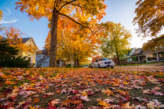 Remembering the colors of autumn (tquist24) Tags: goshen hdr indiana nikon nikond5300 autumn car cars city fall geotagged house leaf leaves maple mapletree sky street tree trees