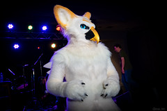 DSC08934 (Kory / Leo Nardo) Tags: pacanthro pawcon paw con pac anthro convention fur furry fursuit suiting mascot sona fursona san jose doubletree hotel california dance party deck animals costuming pupleo 2018