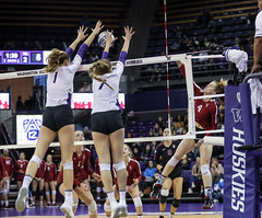 Stanford Washington-FT4I7133 (Pacific Northwest Volleyball Photography) Tags: volleyball ncaa stanford washington uwhuskies pac12 pac12vb