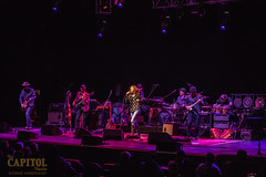 Edie Bickel and the New Bohemians 11.8.18 the cap photos by chad anderson-8689 (capitoltheatre) Tags: thecapitoltheatre capitoltheatre thecap ediebrickell newbohemians ediebrickellnewbohemians housephotographer portchester portchesterny livemusic