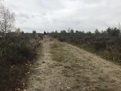 2018 haarlerbergtrail 02 (62)