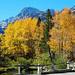 Autumn at Bishop Creek Bridge, Sierra Nevada Range, CA 10-18