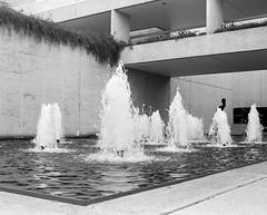 Gallery (Nathan A. West) Tags: mediumformat medium format 120 120m maiya mamiya rb67 6x7 film analogue scan eppson v550