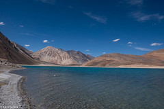 364-himalaiaIndi-PangongTso-P1140489 (Xavi Tarafa) Tags: himalaiaindi2018 india ladakh lago lake llac pangong pangongtso