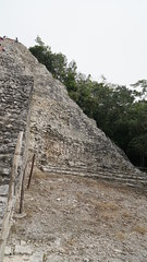 2017-12-07_12-26-55_ILCE-6500_DSC03027 (Miguel Discart (Photos Vrac)) Tags: 2017 24mm archaeological archaeologicalsite archeologiquemaya coba e1670mmf4zaoss focallength24mm focallengthin35mmformat24mm holiday ilce6500 iso100 maya mexico mexique sony sonyilce6500 sonyilce6500e1670mmf4zaoss travel vacances voyage yucatecmayaarchaeologicalsite yucateque