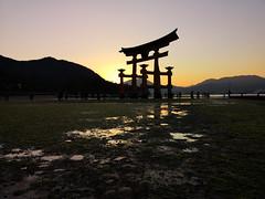 Tayo ga shizumu (bruno carreras) Tags: japon japan nippon isla island miyajima isukushima pagoda templo temple torii senjokaku hatsukaichi miyajimacho ciervo deer shika sol sun sunsen aterdecer puerto budismo budist