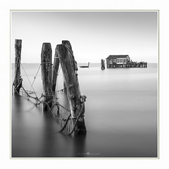 I AM at home (paolo paccagnella) Tags: phpph© 2018 paolopaccagnella veneto italia ita bn ass bw blackandwhite quiet monochrome minimal eos canonequipment lenssigma valle seascape sea fisherman foto flickr framework fog fineart
