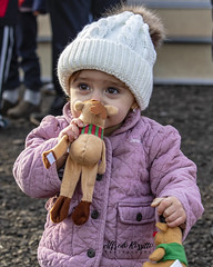 IMG_570 (alfredo.rossitto) Tags: t6i rebel canon portrait winter child toddler knittedhat hat christmas baby reindeer toy toys jacket kiss